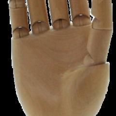 articulated wooden hands